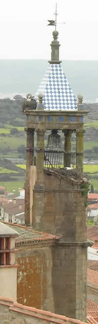 bell tower with storks' nests, Trujillo