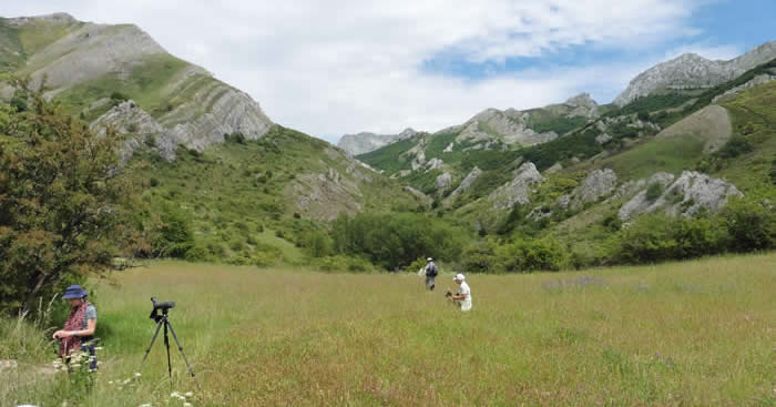 Picos meadow and mountain