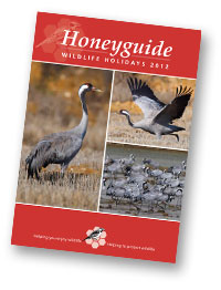 Honeyguide brochure 2012