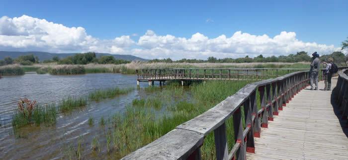 Las Tablas de Damiel National Park