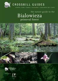 Crossbill Guide Bialowieza